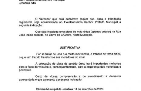 INDICAÇÃO Nº 11-2020