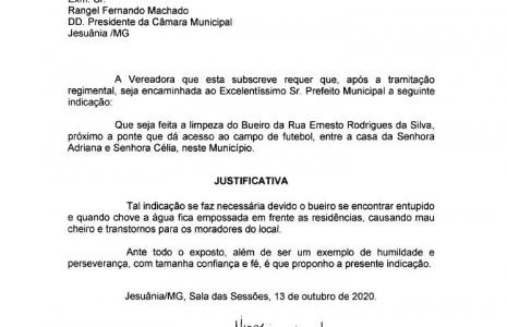 INDICAÇÃO Nº 13-2020
